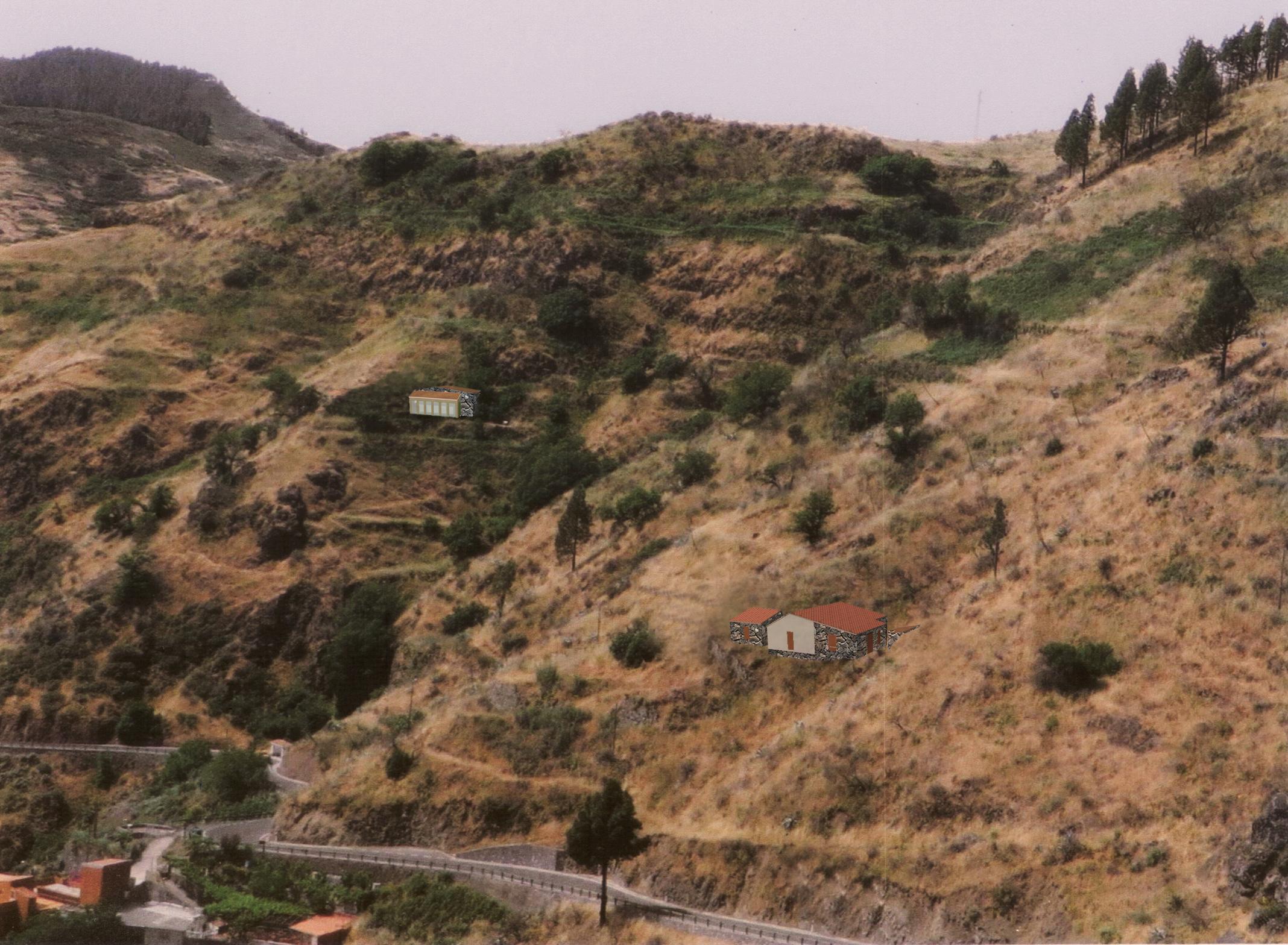 La sequía pone en riesgo la apicultura en Tenerife