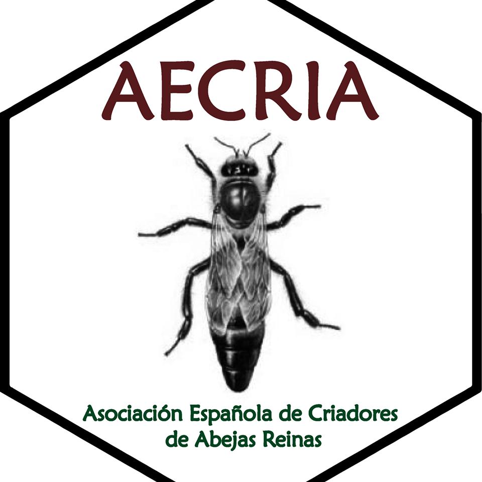 Los criadores alarmados por los precios de abejas reinas