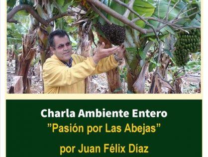 Pasión por las abejas. Charla de Juan Félix Díaz en Agaete